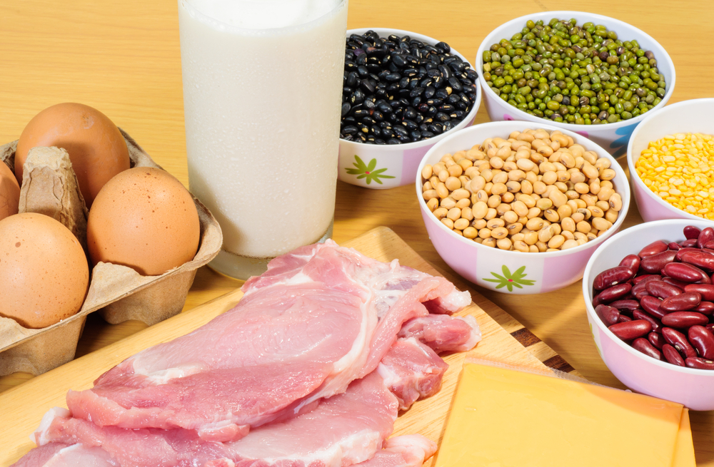 Maximize your Intake of Protein