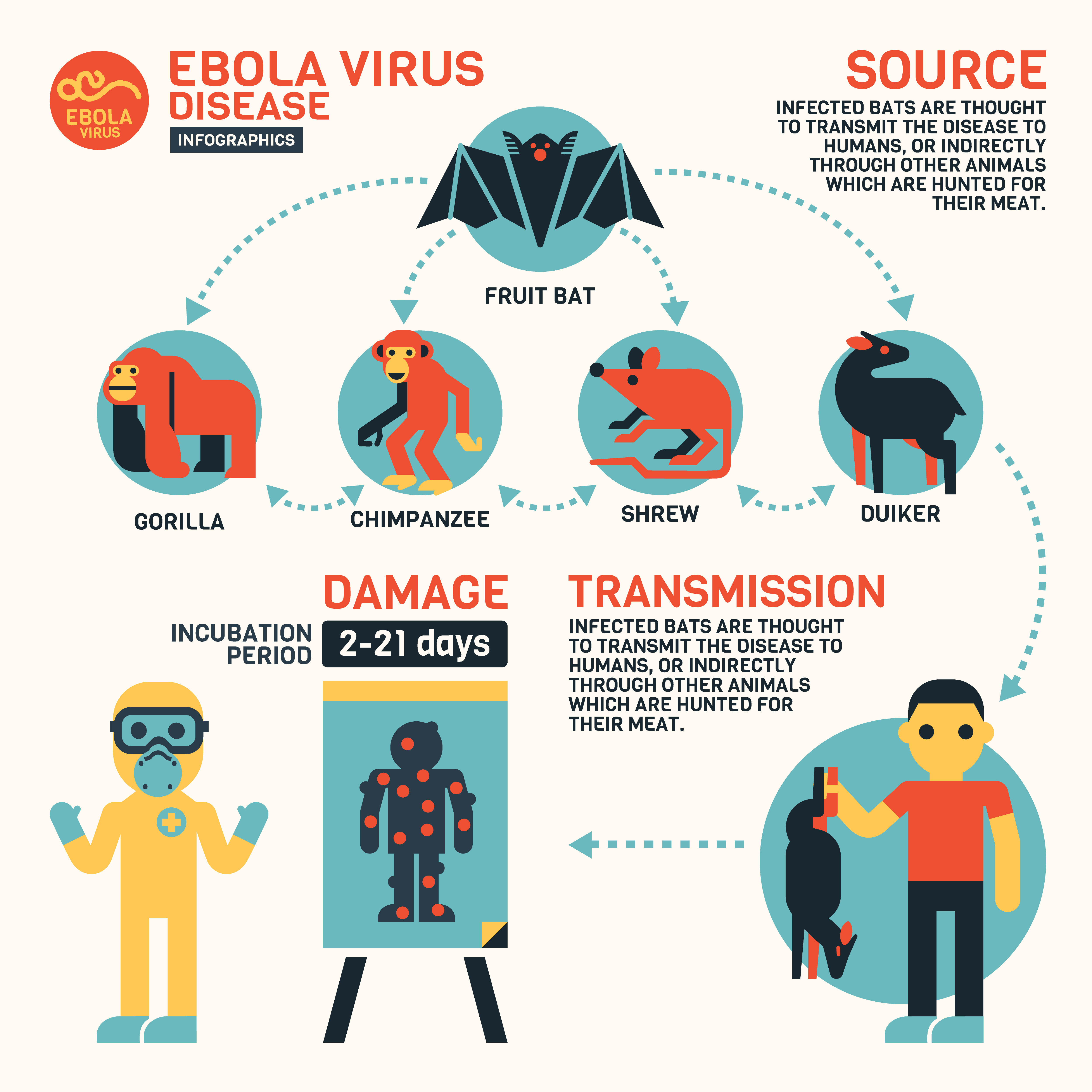 Ebola-Disease-AllDayChemist-Health-Blog