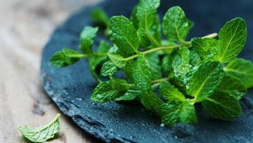 Benefits of Mint leaves