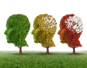 Causes and signs of Alzheimer's disease