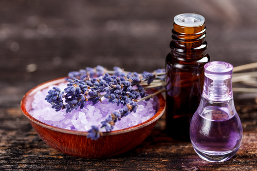Scientific and Medicinal Benefits of Lavender Essential Oil