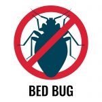 Bedbugs Seemingly Increase Your Risk of Allergic Reactions and Deadly Asthma Attacks