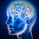 5 Safety Measures for Alzheimer's Patients