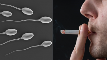 Can Smoking Cause Infertility in Males?